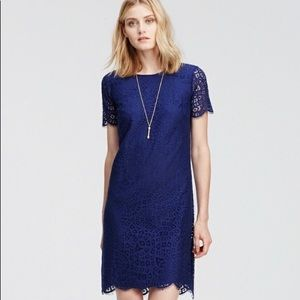 Ann Taylor Blue Flower Mosaic Lace Shift Dress